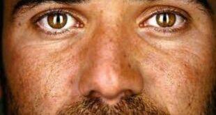 open La mia storia - Andre Agassi - La Recensione