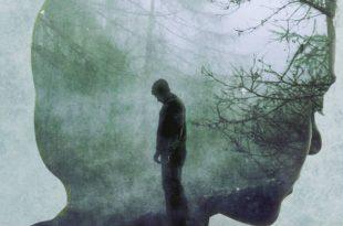 Donato Carrisi - La ragazza nella nebbia