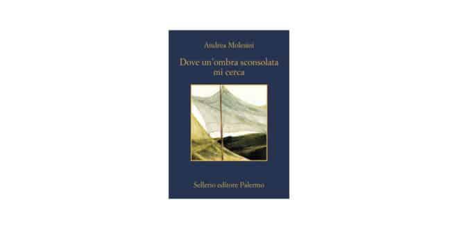 Andrea Molesini - Dove un'ombra sconsolata mi cerca - Sellerio Editore