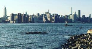 Cinque canzoni famose dedicate a New York